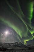 'Northern Lights (Aurora Borealis); Yukon, Canada'
