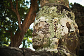 'Carved faces peer out from a temple in the Angkor Wat temple complex; Siem Reap, Cambodia'