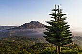 Panoramic view of Mount Batur from Kintamani, Bali, Indonesia