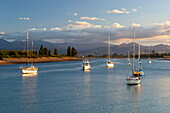 Yachts anchored in estuary, Mapua, Nelson region, South Island, New Zealand, Pacific