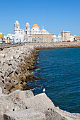 Quai and Cathedral in the historical town of Cadiz, Cadiz Province, Andalusia, Spain, Europe