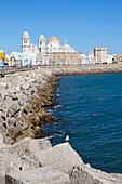 Kai und Kathedrale in der Altstadt von Cádiz, Provinz Cádiz, Costa de la Luz, Andalusien, Spanien, Europa