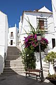 White village in the historical town of Vejer de la Frontera, Costa de la Luz, Cadiz Province, Andalusia, Spain, Europe