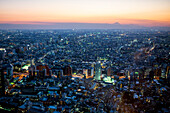 Tokyo in January during the blue hour with some views of Mt. Fuji, Tokyo, Japan