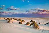 Dunes and beach, Amrum Island, North Frisian Islands, Schleswig-Holstein, Germany