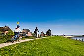 Cyclists on the dike, Steenodde village, Amrum Island, North Frisian Islands, Schleswig-Holstein, Germany