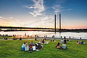 Sunset at the Rhine meadows, Duesseldorf, North Rhine Westphalia, Germany