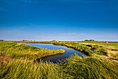 Salt marsh and dwelling mound, Hallig Langeness, North Frisian Islands, Schleswig-Holstein, Germany