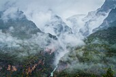 Bellos river, mist and deciduous forest in autumn. Añisclo Canyon. Huesca, Aragon, Spain, Europe.