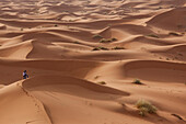 Photographers in search for a special angle in the sand dunes of Merzouga