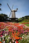 San Francisco, California, Golden Gate Park, Queen Whilhemena Windmill, USA