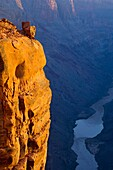 Golden sunrise light on boulder at the edge of a steep sheer rock cliff above the Colorado River, Toroweap, Grand Canyon National Park, Arizona