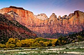 Dawn light on The West Temple and Towers of the Virgin, Zion Canyon, Zion National Park, Utah