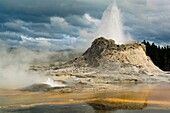 Geothermal steam and water venting out of Castle Geyser, Upper Geyser Basin, Yellowstone National Park, Wyoming