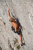 climb, sport, Ennstal, Losenstein, Nixloch, Austria, mountain, wall, precipitous, steep, man, vertically, free climbing, sport, free climbing,