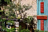Moustiers_Sainte_Marie, France, Europe, Provence, Alpes_de_Haute_Provence, village, house, home, business, trade, plants
