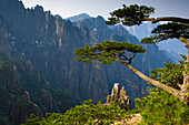 Huangshan, China, Asia, Huangshan, mountains, national park, cliff forms, erosion, pines