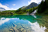 Lac blue, Switzerland, Europe, canton Valais, nature reserve Val dHérens, lake, color, roots, stones, brook, spring, source, mountains