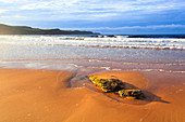 Bay, cliff, rock, body of water, Great Britain, Highland, highlands, cliffs, coast, scenery, sea, seashore, nature, North Sea, panorama, sand, sand beach, Scotland, Scottish highlands, summers, stones, mood, beach, seashore, Strathy, Strathy Bay, Sutherla