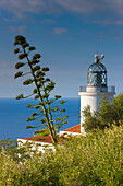 Cap de San Sebastia, Spain, Europe, Catalonia, Costa Brava, sea, Mediterranean Sea, coast, lighthouse, agaves