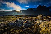 Alps, view, Fuorcla Surlej, mountain, mountains, mountain massif, Engadin, Engadine, mountains, back light, glacier, Graubünden, Grisons, sky, morning, morning light, Oberengadin, Upper Engadine, Piz Tschierva, Switzerland, Swiss Alps, summer, sunrise, mo