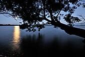Dusk and rising full moon over Kagawong Lake