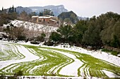 Son Bernadas Tramuntana Orient Bunyola Majorca Spain Balearic Islands