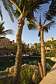 Madinat Jumeirah Hotel, Dubai, United Arab Emirates, Middle East