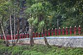 Myanmar, Kayin (Karen) State, Hpa-An surroundings, Monk statues line near Kaw Ka Thawng caves.
