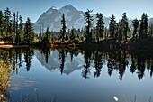 This landscape photo is of Picture Lake at Heather Meadows on Mt  Baker Washington in autumn  Breath taking mountain is reflected off the water of the lake and fall foliage surrounds the edges  Located in peaceful Baker National Forest in Whatcom County,