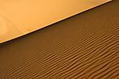 Oued Tin Tarabine. Tassili Ahaggar. Sahara desert. Algeria.