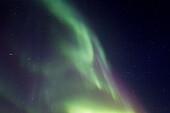 Aurora Borealis Northern Polar Lights detail over the boreal forest outside Yellowknife, Northwest Territories, Canada, MORE INFO The term aurora borealis was coined by Pierre Gassendi in 1621 from the Roman goddess of dawn, Aurora, and the Greek name for