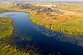 Aerial view of the Okavango Delta, Botswana. The vast inland delta is formed from the Okavango River. This flows into the Delta, creating a beautiful mosaic of water channels, grasslands, forests and lagoons. The water never reaches the sea, instead empty