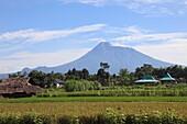 Indonesia, Java, Gunung Merapi volcano, agricultural fields,