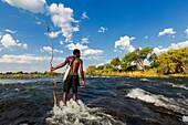 Landscape photo of a traditional fisherman standing in the Zambezi river with this net. Zambezi River, Zambia.