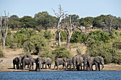 From Victoria Falls is possible to visit the nearby Botswana. Specifically Chobe National Park. Chobe National Park. The Chobe National Park is located in the Northern part of Botswana and comprises an area of approximately 11 000 km². The park lies along
