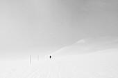 Hiker in snow storm, Kaesivarsi, Lapland, Finland