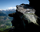 Prayer flag on rock, Monte die Glorenza (2395 m), Vinschgau, South Tyrol, Italy