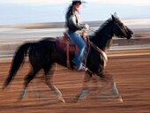 Rodeo competitors warm up their horses at the Tucson Rodeo in Tucson, Arizona, United States