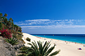 Beach, Seashore, Morro Jable, Fuerteventura, Canary islands, isles, Spain