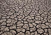 Crack Patches, dry, Sossusvlei, Dunes, Sesriem, Namib, Naukluft, Park, Namibia, Africa