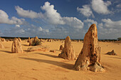 Pinnacles, Nambung National Park, Australia, Western Australia, Cervantes, sandy desert, Noongars, Werinity, limestone_pillar, Pinnacles Desert, Indian Ocean, quartz sand, clouds, Tamala limestone, Banksia, Indian Ocean Drive, landscape tourist_attraction