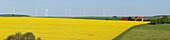 Wind turbines, houses with solar cells, photovoltaic cells, rapeseed field, bio-energy, renewable energy, near Gunzenhausen, Mittelfranken, Lower Franconia, Franconia, Bavaria, Germany, Europe