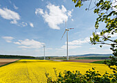 Wind park with wind turbines in a rapeseed field, bio-energy, renewable energy, near Gunzenhausen, Mittelfranken, Lower Franconia, Franconia, Bavaria, Germany, Europe