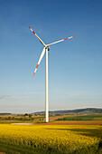 Wind park with wind turbines in a rapeseed field, bio-energy, renewable energy, near Gunzenhausen, Mittelfranken, Lower Franconia, Franconia, Bavaria, Germany, Europe