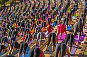 2000 people doing yoga together at Red Rocks Amphitheatre, Morrison (Denver), Colorado USA.