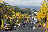 first lade rosario murillo designed yellow threes of life in managua.