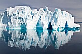 Iceberg in the Weddell Sea on the eastern side of the Antarctic Peninsula during the summer months, Southern Ocean  MORE INFO An increasing number of icebergs are being created as climate change is causing the breakup of major ice shelves and glaciers all