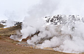 The geothermal area near Hveragerdi during winter. europe, northern europe, scandinavia, iceland, March.