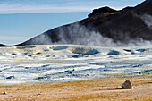 Namafjall  Geothermal area  Reykjahlid